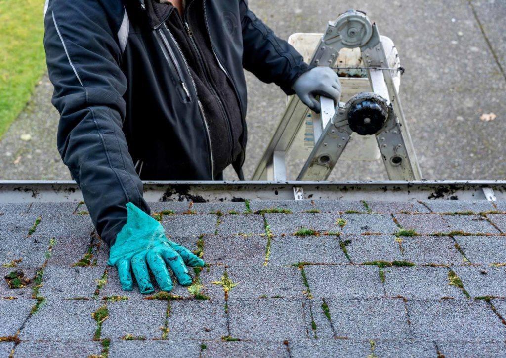 Sélectionnez avec soin la toiture de votre maison !
